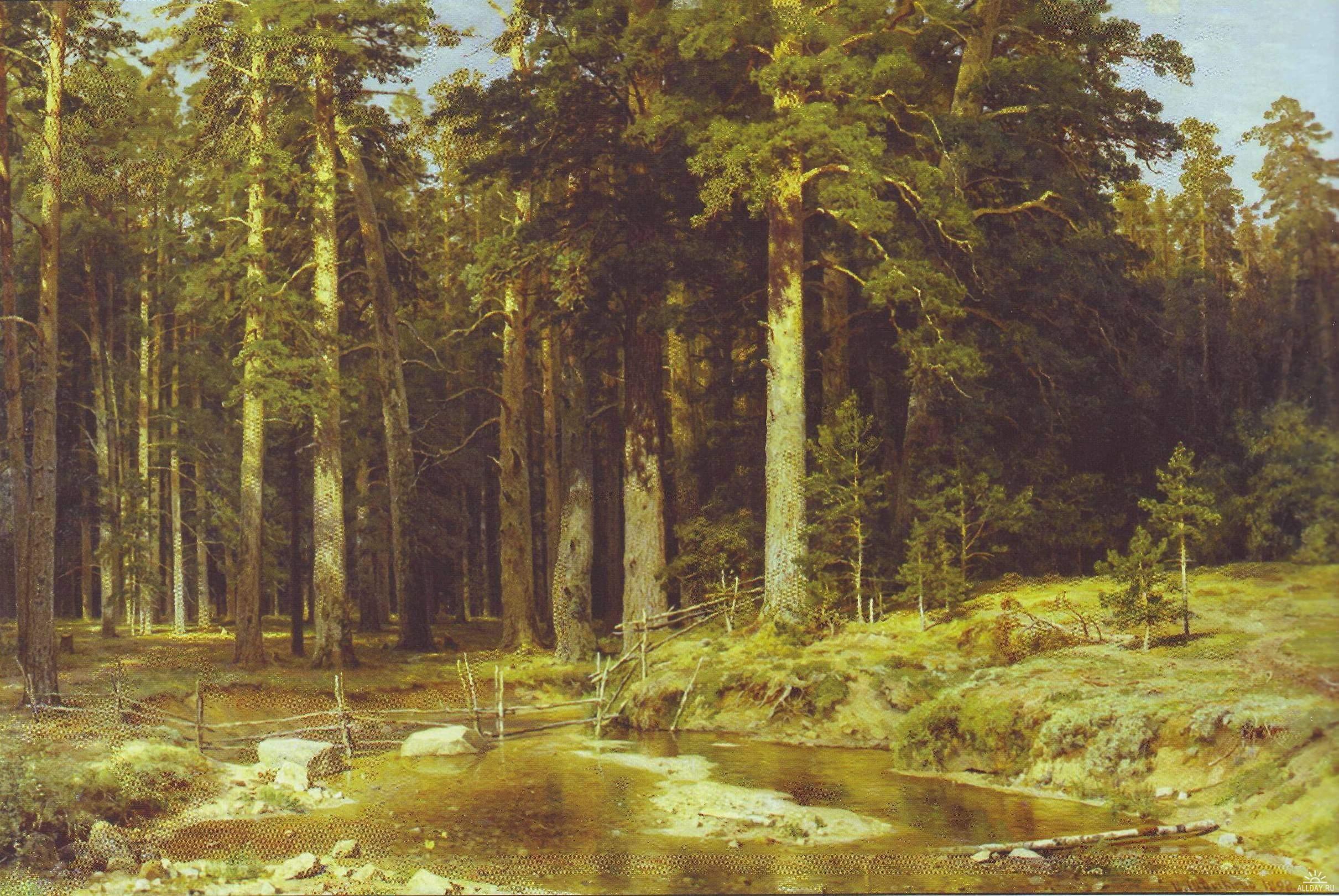 фото лес пикник