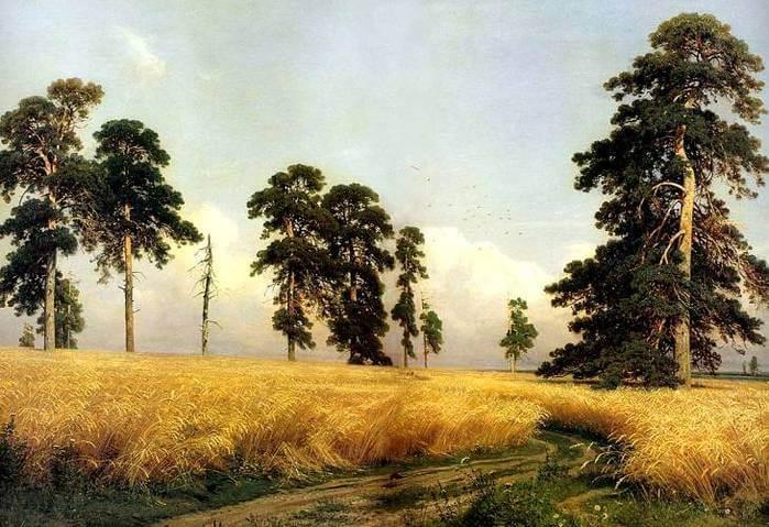 Сочинение по картине И.И. Шишкина «Рожь»